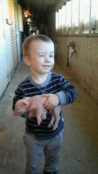 Boy holding pig winking